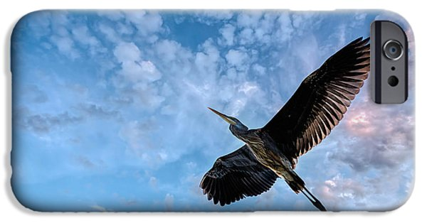 Glides iPhone Cases - Flight Of The Heron iPhone Case by Bob Orsillo