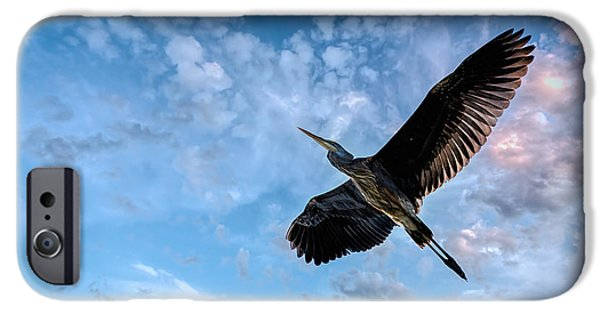 Animals Photographs iPhone Cases - Flight Of The Heron iPhone Case by Bob Orsillo