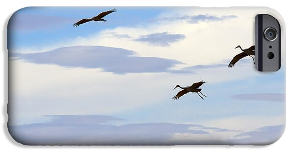 Flight iPhone Cases - Flight of the Sandhill Cranes iPhone Case by Mike  Dawson