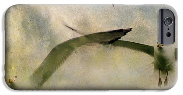 Flying Seagull iPhone Cases - Flight Of The Seagulls iPhone Case by Gothicolors Donna Snyder