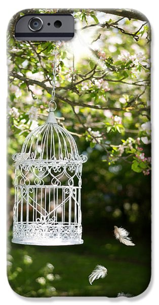Bird Cage iPhone Cases - Floating Feathers iPhone Case by Amanda And Christopher Elwell