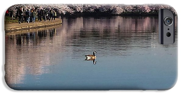Washingtondc iPhone Cases - Floating in the Tidal Basin iPhone Case by Debra Bowers