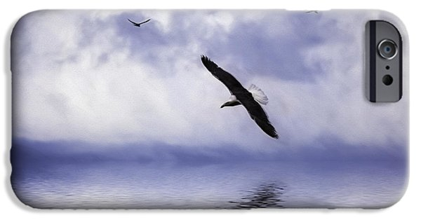 Flying Seagull iPhone Cases - Floating On Air iPhone Case by Diane Schuster