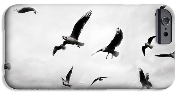 Seagull iPhone Cases - Flock iPhone Case by Mark Rogan