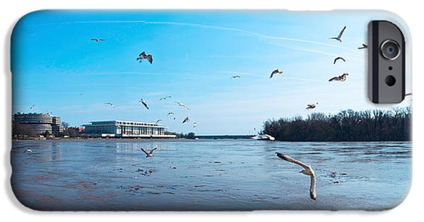 Flying Seagull iPhone Cases - Flock Of Birds Flying At Old Georgetown iPhone Case by Panoramic Images