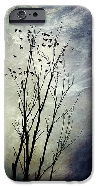 Rollo Digital Art iPhone Cases - Flock Of Birds In Silhouette iPhone Case by Christina Rollo