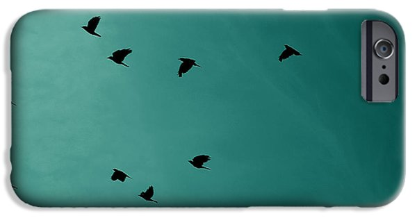 Animals Photographs iPhone Cases - Flock Of Birds iPhone Case by Martin Newman