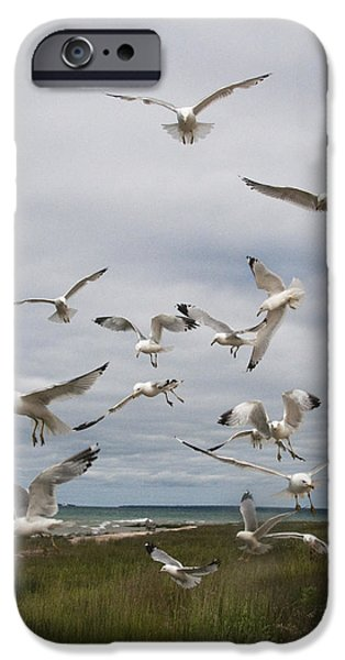 Flying Seagull iPhone Cases - Flock of Gulls by the Straits of Mackinac No. 2564 iPhone Case by Randall Nyhof