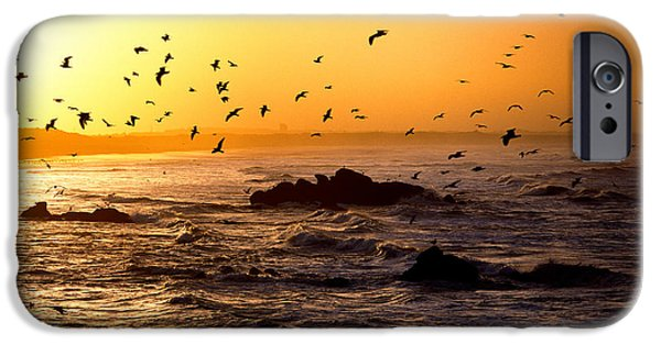 Flying Seagull iPhone Cases - Flock Of Seagulls Fishing In Waves iPhone Case by Panoramic Images