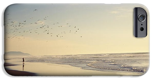 Flying Seagull iPhone Cases - Flock Of Seagulls Flying Above A Woman iPhone Case by Panoramic Images