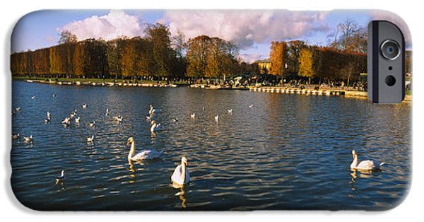 Flocks Of Birds iPhone Cases - Flock Of Swans Swimming In A Lake iPhone Case by Panoramic Images