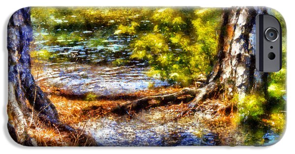 Tree Roots iPhone Cases - Flooded Roots iPhone Case by Daniel Eskridge