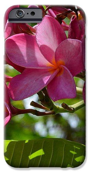 flora key west iPhone Case by Monika Maksimowicz