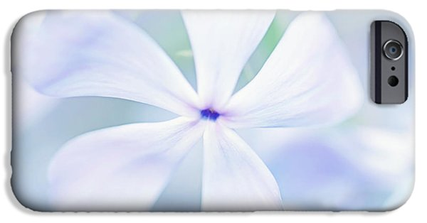 Phlox iPhone Cases - Floral in Pastel Tones of Blue iPhone Case by Natalie Kinnear