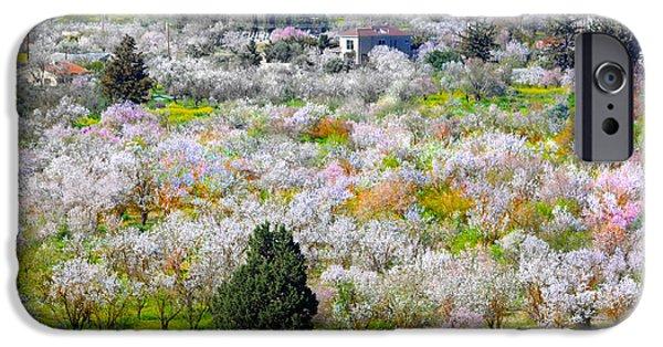 Paradise. Flower Photographs iPhone Cases - Floral Landascape iPhone Case by Augusta Stylianou