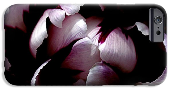 Square Format iPhone Cases - Floral Symmetry iPhone Case by Rona Black