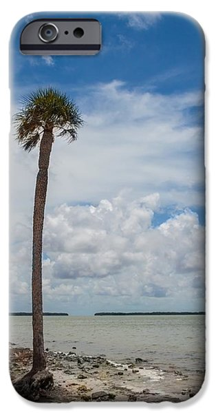 Red Mangroves iPhone Cases - Florida Bay 6943 iPhone Case by Rudy Umans