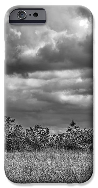 Florida Everglades 0184BW iPhone Case by Rudy Umans