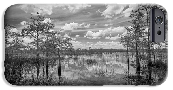 Everglades iPhone Cases - Florida everglades 5210BW iPhone Case by Rudy Umans