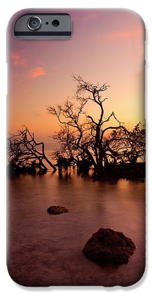 Sea iPhone Cases - Florida Keys Sunset iPhone Case by Mike  Dawson