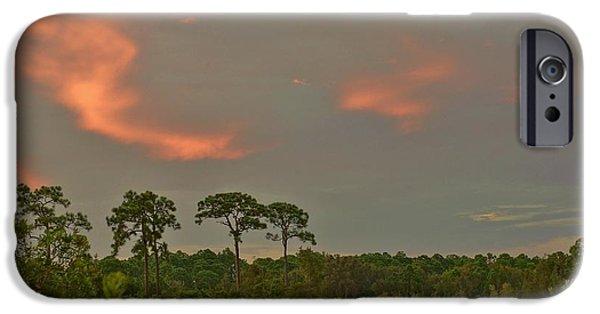 Lynda Dawson-youngclaus Photographer iPhone Cases - Florida Landscape iPhone Case by Lynda Dawson-Youngclaus
