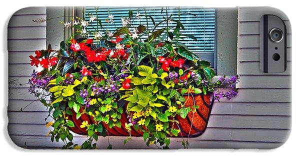 Basket iPhone Cases - Flower basket iPhone Case by Claudia Mottram