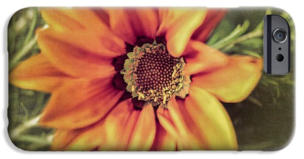 Close Focus Floral iPhone Cases - Flower Beauty I iPhone Case by Marco Oliveira