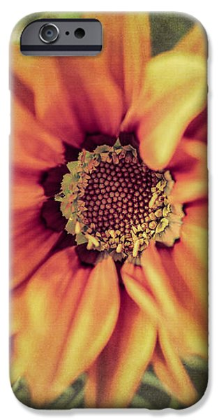 Flower Beauty I iPhone Case by Marco Oliveira