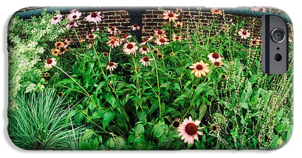 Chelsea iPhone Cases - Flower Bed, High Line, Chelsea iPhone Case by Panoramic Images