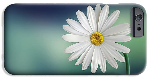 Close Up iPhone Cases - Flower iPhone Case by Bess Hamiti