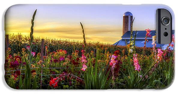 Amish Photographs iPhone Cases - Flower farm iPhone Case by Mark Papke