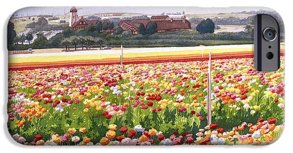 Windmills iPhone Cases - Flower Fields in Carlsbad 1992 iPhone Case by Mary Helmreich