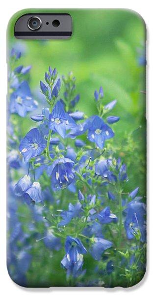 Flower Frenzy iPhone Case by Kim Hojnacki