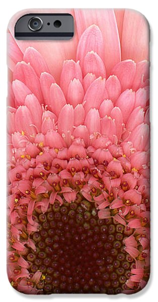 Flower - I LOVE Pink iPhone Case by Mike Savad