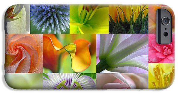 Decor Photography iPhone Cases - Flower Macro Photography iPhone Case by Juergen Roth