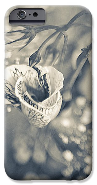 Flower iPhone Case by Mark-Meir Paluksht
