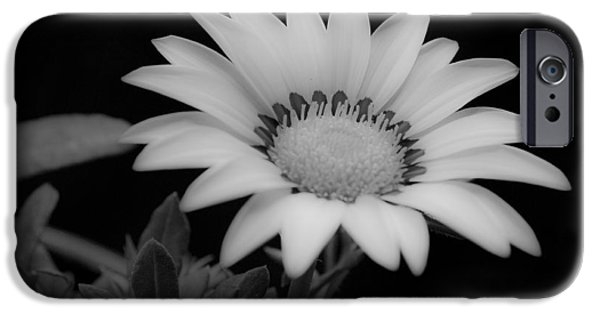 Close Focus Floral iPhone Cases - Flower  iPhone Case by Ron White