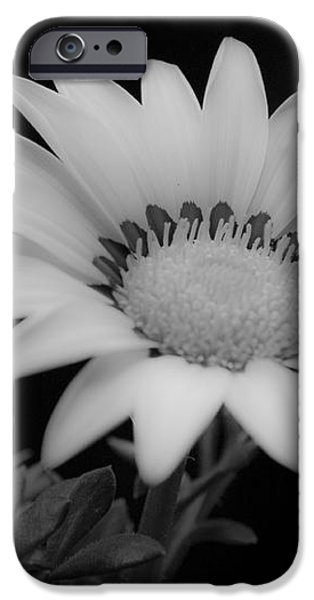 Flower  iPhone Case by Ron White