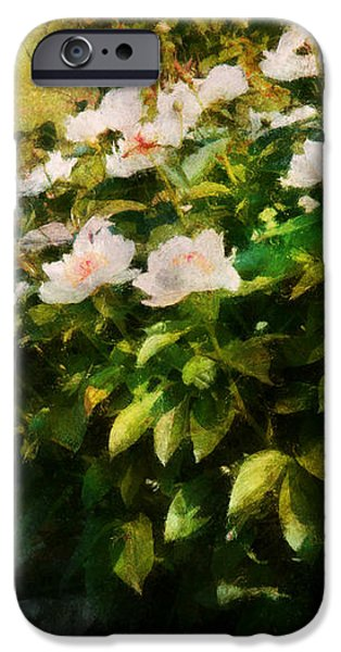 Flower - Rose - By a wall  iPhone Case by Mike Savad