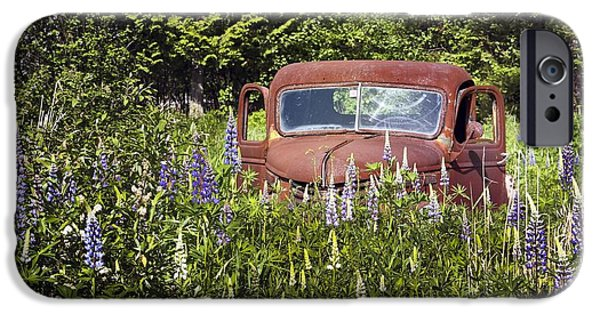 Rural Maine Roads iPhone Cases - Flower Truck iPhone Case by Karin Pinkham