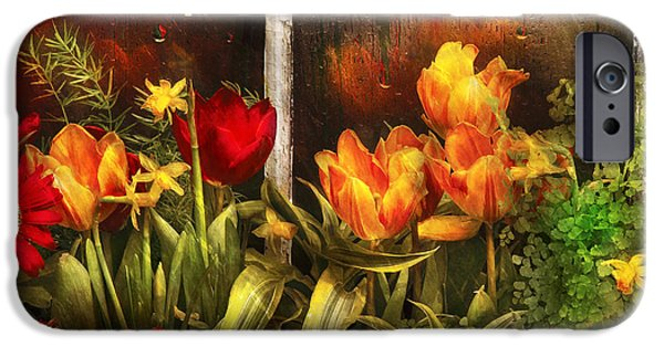 Garden Scene Photographs iPhone Cases - Flower - Tulip - Tulips in a window iPhone Case by Mike Savad