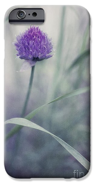 Close Up Floral iPhone Cases - Flowering Chive iPhone Case by Priska Wettstein