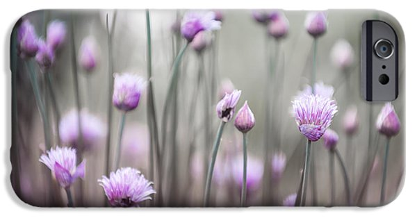 Flora Photographs iPhone Cases - Flowering chives IV iPhone Case by Elena Elisseeva