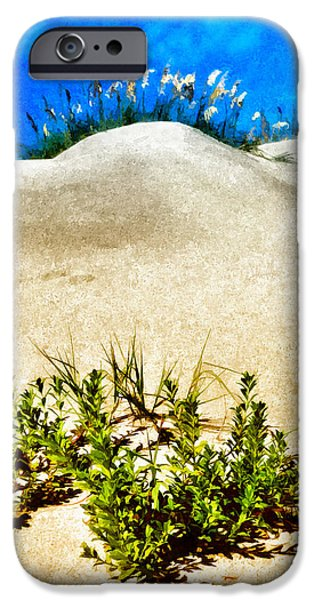 Flowering Dunes - Outer Banks iPhone Case by Dan Carmichael