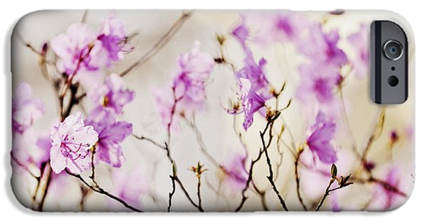 Sepia Flowers iPhone Cases - Flowering rhododendron iPhone Case by Elena Elisseeva