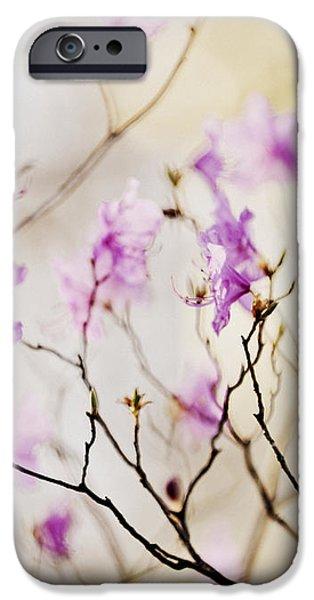 Flowering rhododendron iPhone Case by Elena Elisseeva