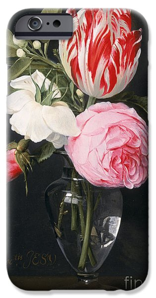 Daniel iPhone Cases - Flowers in a Glass Vase iPhone Case by Daniel Seghers