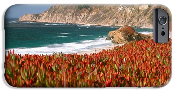 Big Sur California iPhone Cases - Flowers On The Coast, Big Sur iPhone Case by Panoramic Images