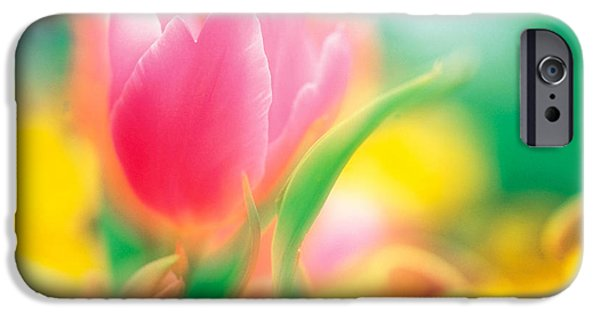 Designs In Nature iPhone Cases - Flowers iPhone Case by Panoramic Images