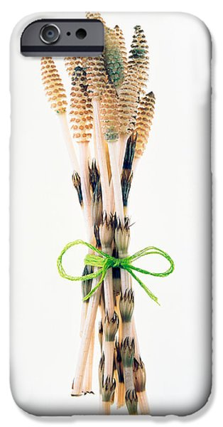 Cut-outs iPhone Cases - Flowers Tied By Rope iPhone Case by Panoramic Images